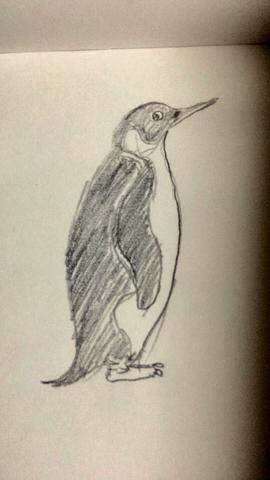 ペンギンは極点に立つ!